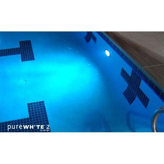 J&J Electronics - PureWhite 2 LED 120V, 41W White LED Pool and Spa Light Fixture - 54084