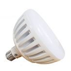 J&J Electronics - PureWhite Pro LED 120V, 21W White LED Pool Replacement Bulb - 54106