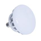 Jacuzzi - JSL LED SPA LAMP 120V - 54293