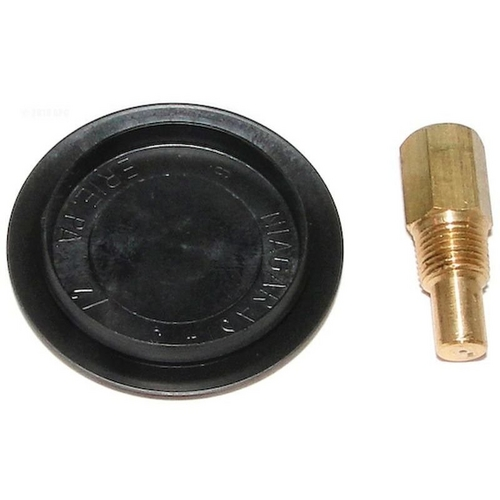 Raypak - Rear Drain Plug and Cover