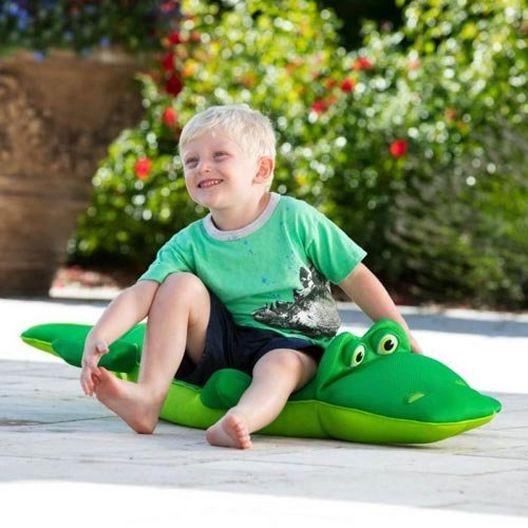 Alligator Pool Petz