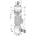 Hayward - SwimClear Models: C2025, C3025, C4025, C5025 Cartridge Filter Parts - 5c49d6b2-1b09-4d31-907c-07e6c84932ba