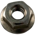 Pentair - Hex Nut, 1/4 x 20 SS - 602916