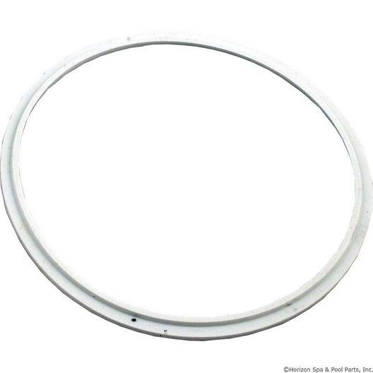 Pentair - Seal, Lens - 603539
