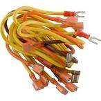 Zodiac  Wire Harness