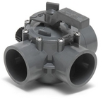Gray Three Port Valve 2in.-2 1/2in. Positive Seal