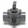 Gray Two Port Valve 2in.-2 1/2in. Positive Seal