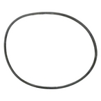 Pentair - O-Ring, Body - 608303