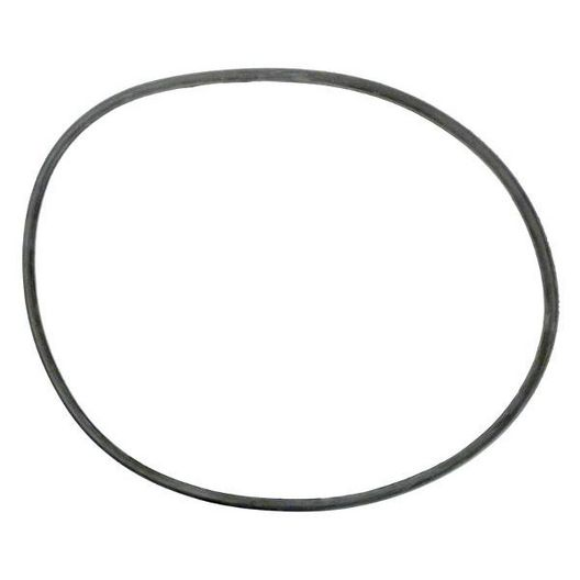 Pentair  O-Ring Body