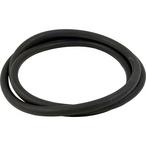 Pentair  O-Ring S8S70
