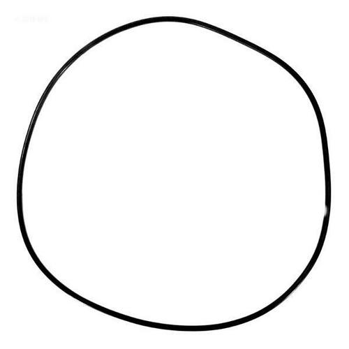 Pentair - O-Ring