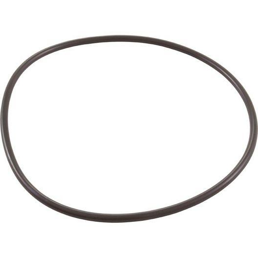 Polaris  O-ring backplate