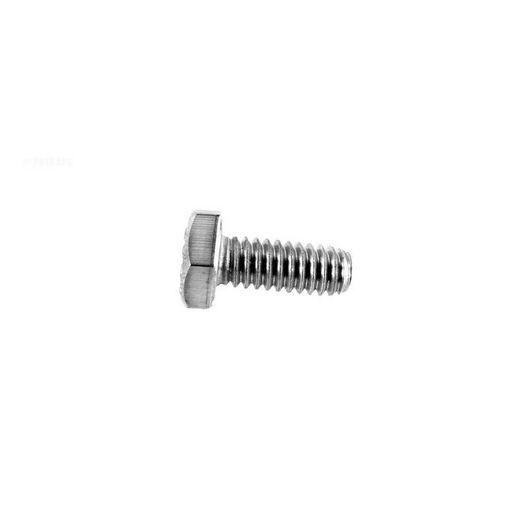 Pentair  Screw 1/4-20 x 5/8in Hh SS