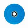 Spa Filter 3093 (PG45)