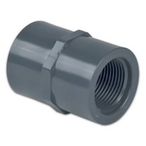 Coupling - 1/4in. Fpt