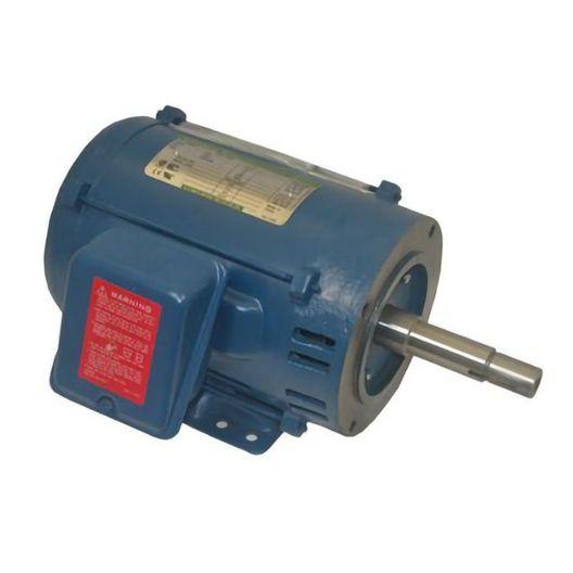 Pentair - No PPDFRT, Motor, 3 HP, 200V, 1 Phase - 613883