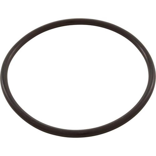 Pentair - Trap Lid O-Ring