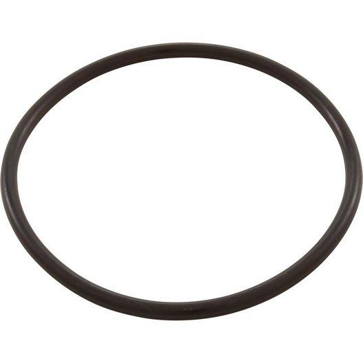 Pentair  Trap Lid O-Ring