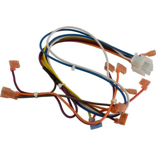 Hayward  Wire Harness Control Panel