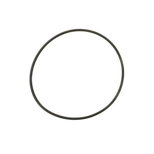 Zodiac - Backplate O-Ring - 617097