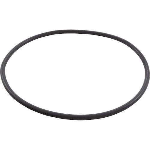 Pentair - O-Ring, Seal Plate Eq