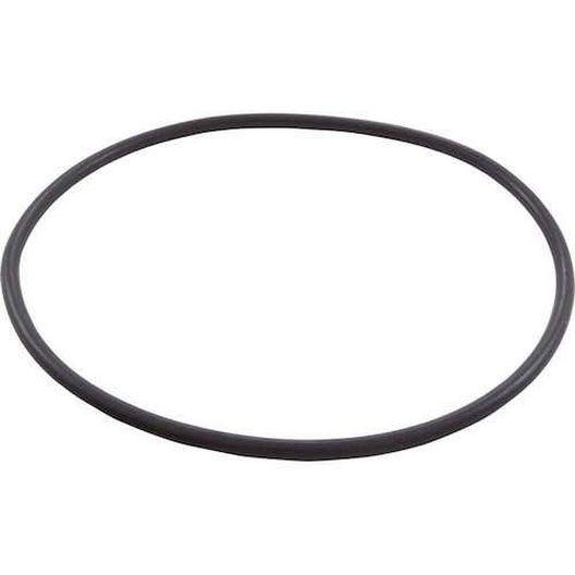 Pentair  O-Ring Seal Plate Eq
