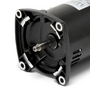 48Y Square Flange 3/4HP Single Speed 3-Phase Pool and Spa Pump Motor