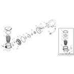 Waterway Hi-Flo Side Discharge Pump - 6211e91b-8610-487d-bf60-4d2d298b5266