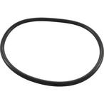 Pentair - Trap O-Ring - 622358