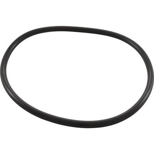 Pentair - Trap O-Ring
