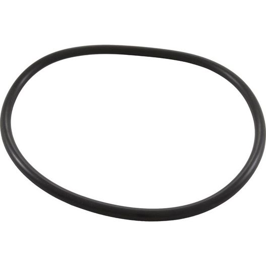 Pentair  Trap O-Ring