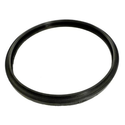Pentair  Gasket Lens