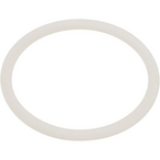 Astralpool - Back Ring - 623176