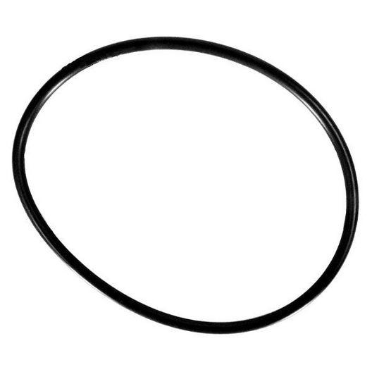 Hayward  OEM Cover O-Ring