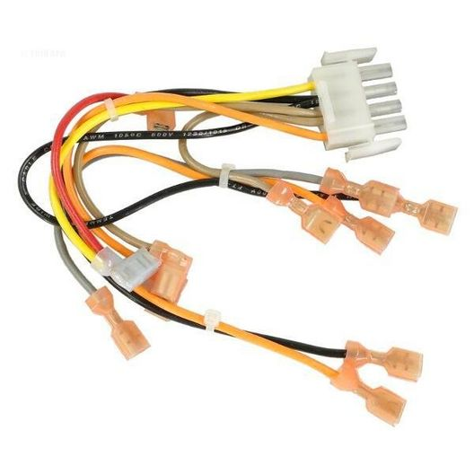 Hayward  Electronic Wiring Harness