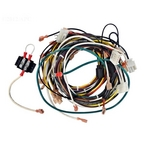 Zodiac - Wire Harness Complete - 624546