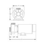 Waterway - Center Discharge 48-Frame 1HP Dual-Speed Spa Pump, 115V - 625215
