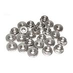 Raypak - Flange Nut Kit - 625416