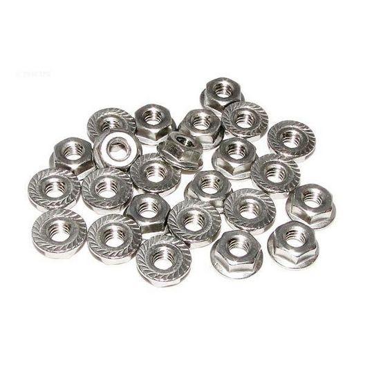 Raypak  Flange Nut Kit