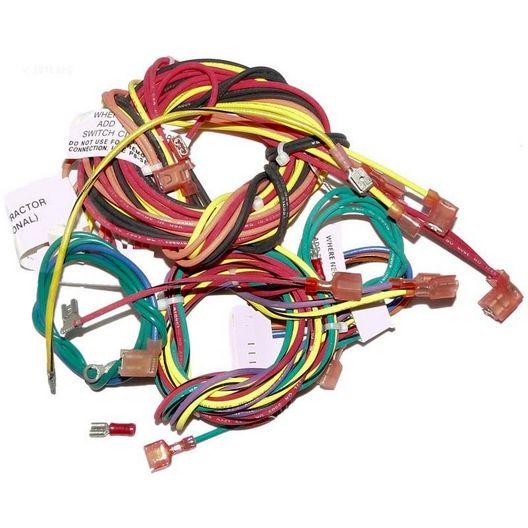 Raypak  Wire Harness Iid