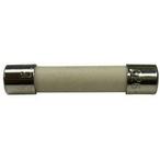1.5 Amp Fuse (Autoclear Plus 240V)-Salt