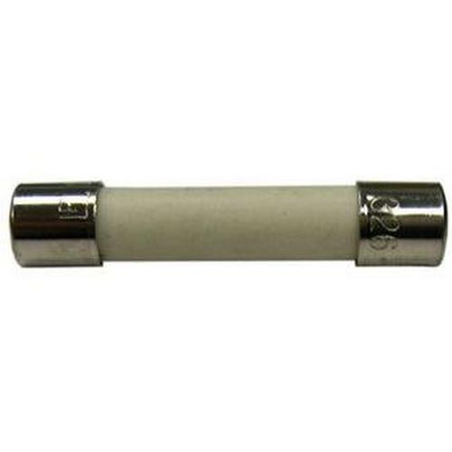 Zodiac - 1.5 Amp Fuse (Autoclear Plus 240V)-Salt