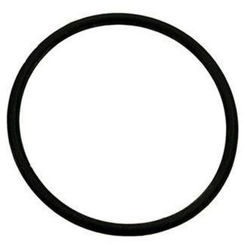 Zodiac - O-Ring-Salt