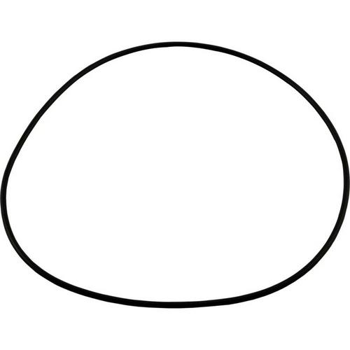 Polaris - O-Ring, Seal Plate - Halcyon Pump