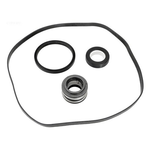 Hayward - Seal Assembly Kit (Seal, Housing and Dif.Gasket)