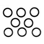 Pentair  Coil/Tubesheet Sealing O-Ring Kit for MasterTemp 250