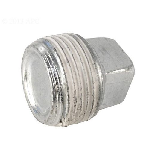 Pentair  3/4 Pipe Plug for Max-E-Therm/MasterTemp