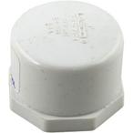 Waterco - Drain Cap, 1in. - 626926