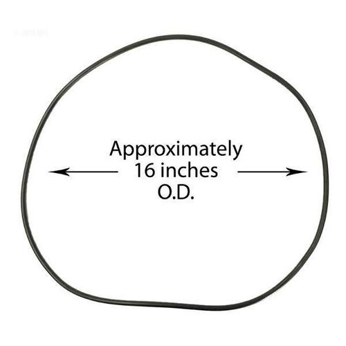 Waterway - Lid O-Ring