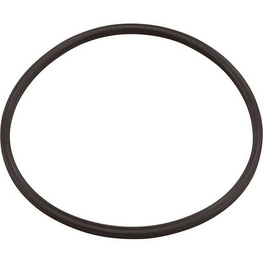 Paramount  In Deck Leaf Canister Lid O-Ring 005-152-0120-00